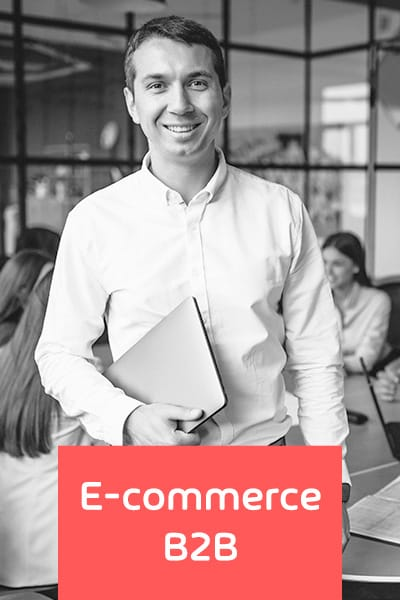 consultoria ecommerce b2b 1 - E-COMMERCE B2B